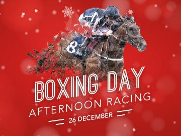 Boxing Day Artwork