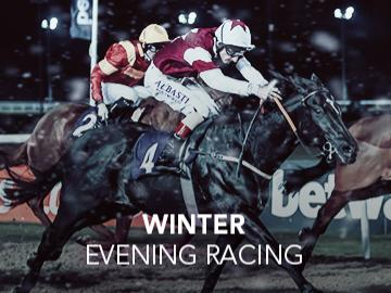 Winter Evening Racing artwork